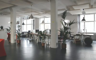 All back to the office? – Well, not really